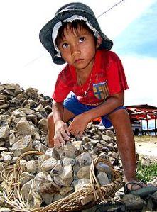 bocah yang bekerja mencari sesuap nasi